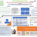 The Frailty Support Team